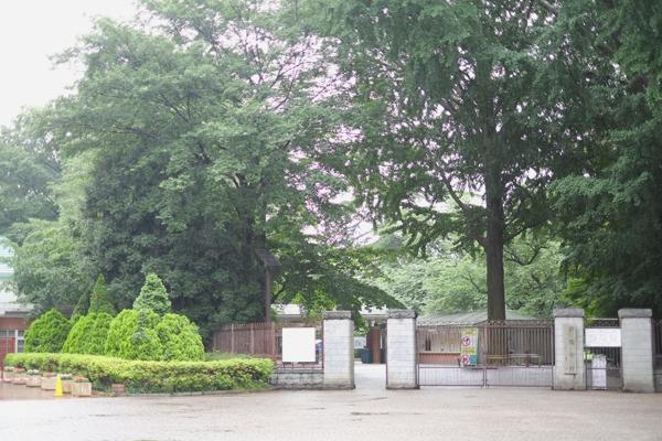 ブログ写真御苑1