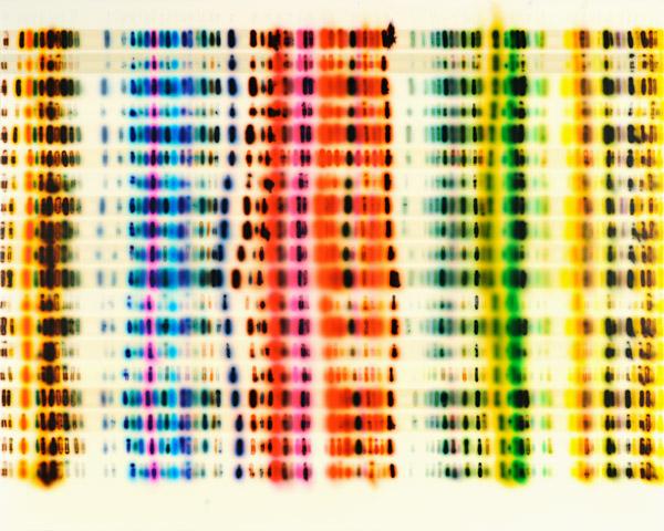 Large_Spectrum